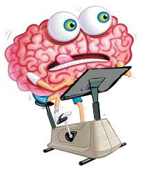 cerveau-2